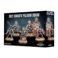 Grey Knights Paladins (GW57-09)